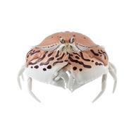 【玩具滿屋】現貨 BANDAI 饅頭蟹 糰子蟲造型轉蛋06 扭蛋 轉蛋 饅頭蟹