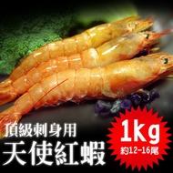 【築地一番鮮】刺身用-頂級大SIZE天使紅蝦1kg (1kg約12-16尾媲美日本牡丹蝦高級海紅蝦可生食) _加購第二組↘758元
