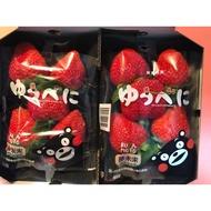 熊本草莓日本直送,品質保證