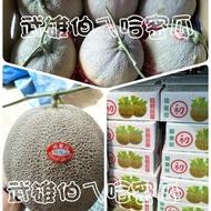 哈密瓜,洋香瓜,綠果肉