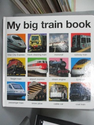 【書寶二手書T3/少年童書_PFQ】My Big Train Book_Priddy, Roger