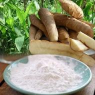 Garut Flour / Pati Stomach Acid / Angkrik / Arrowroot 500gr / Wrinkle Pati / Lerut / Medication Medication