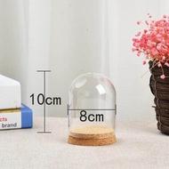 แจกันแก้วแบบ Diy สำหรับตกแต่งด้วยไม้อวบน้ำ,ไม้ก๊อกฝาครอบทรงโดม