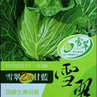 雪翠高麗菜種子$50(10粒籽)