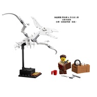 """【紅磚屋】樂高 LEGO 21320 """"拆賣"""" 無齒翼龍屬 + 考古家人偶  <現貨 / 全新未組裝/含拆解器>"""