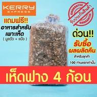 ด่วน!! รับซื้อผลผลิตคืน ไม่ต้องกลัวหาตลาดไม่ได้!! ก้อนเชื้อเห็ดฟาง 4 ก้อน แถมฟรีอาหารสำหรับเพาะ (มูลวัว+แป้ง)