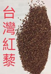 台灣紅藜種子。家坤種子專賣店
