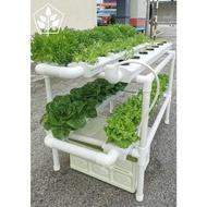 Farm Factory 35   Outdoor system   Hydroponics   Hydroponic System    2 Tier Setup   35 Plants / Plants   Vegetables