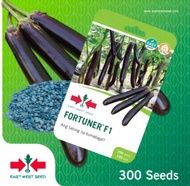 EAST-WEST SEEDS FORTUNER F1 (EGGPLANT) - HYBRID
