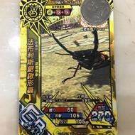 新甲蟲王者 法布利斯鋸鍬形蟲