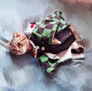 鬼滅之刃卡哇伊寵物衣 炭治郎 禰豆子 寵物COS 毛小孩 寵物和服 寵物服飾【HP26】