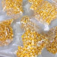 鸚鵡點心-冷凍乾燥脆口玉米粒 20公克