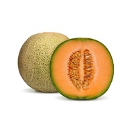 10pcs  sweet musk melon: ROCK Melon easy to plant and potted friendly(newd frame)