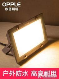 「樂天優選」LED投光燈戶外防水超亮大功率室外射燈探照燈照明燈50W/100W