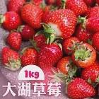 預購【家購網嚴選】鮮豔欲滴大湖香水草莓1公斤/盒(2~3號果)