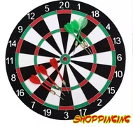 Champion Dart Board 17 inc's