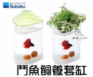 [第一佳 水族寵物] 只限自取-日本水作SUISAKU [三角鬥魚飼養套缸] (含種植土+一體成型魚缸+上蓋)