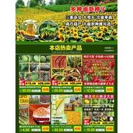 【YY】種子批發 有機黃豆苗芽苗菜種子 小黃豆芽種子 珍珠粒小黃金 生豆芽種子 高產量 折扣優惠