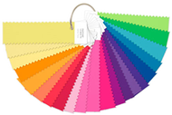 Pantone FFN100 螢光【紡織】尼龍鮮豔色組合色卡 / 組