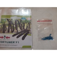 Fortuner F1 Eggplant Repacked Seeds