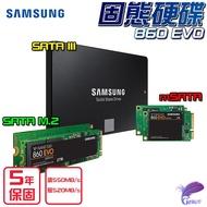 SAMSUNG 三星 860 EVO 系列 SSD SATAIII SATA M.2 mSATA 固態硬碟