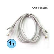CAT5E CAT.5e 高速網路線 1米 1M 1公尺