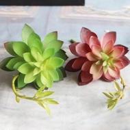 1Pc ไม้อวบน้ำประดิษฐ์ Bonsai Mini สีเขียว Desktop Succulents ปลอมพืชบ้านสวนงานแต่งงาน Party Decor Hot