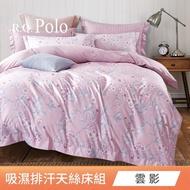 【R.Q.POLO】獨家贈送小抱枕 使用3M吸濕排汗專利 天絲兩用被床包四件組(雙人5尺/加大6尺-均一價)