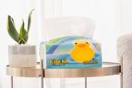 【到貨囉!!】彩虹小鴨抽取式衛生紙100抽96包 整箱量販包【全店免運】