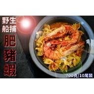 【享心鮮】野生活凍 肥豬蝦 10尾 / 海鮮 / 大草蝦 / 海大蝦 / 冷凍食品 / 滿額免運