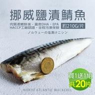 【築地一番鮮買1送1】厚片超大油質豐厚挪威薄鹽鯖魚10片(加贈10片共20片/210G片)