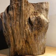 台灣肖楠原木 (創作材、水材、擺件、雕刻、杯墊、原木墊、批發、倒閣、檜木、肖楠、傢俱)