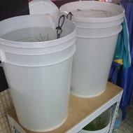 台南百寶桶含蓋子9成新出售 23L 6加侖 PP桶可當養魚養殖桶/水草/繁殖/漁產/飼料/分裝/密封/白色塑膠/耗材桶
