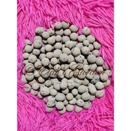 Hydroton Clay Pebbles