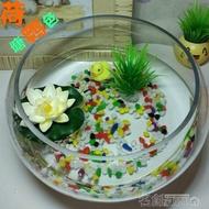 小型水族箱辦公室桌面創意圓形玻璃小魚缸大號烏龜缸迷你金魚缸DF