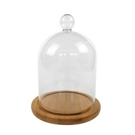 Healthylife Clear Glass Cloche Display Flower Preservation Vase