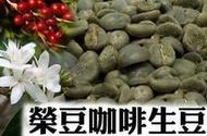 【榮豆咖啡生豆】水洗 耶加雪菲G1 沃特孔加村 每包500公克 衣索比亞精品咖啡生豆