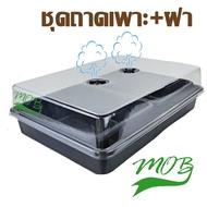ส่งฟรี…!!MOB กล่องเพาะเมล็ด  ถาดไดโซะ ชุดถาดไดโซะพร้อมฝาอบ ฝาครอบ สำหรับ เพาะเมล็ดแคคตัส กระบองเพ็ชร ปลูกผักได้ ป้องกันนก..กระถางปลูกต้นไม้คุณภาพ..!!