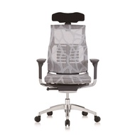 5 years Warranty Ergohuman Pofit World Class Ergonomic Chair / Office Chair / Gaming Chair