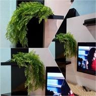 Bunga hiasan gantung plastik / artificial hanging flowers
