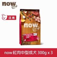 Now! 紅肉無穀天然糧成犬配方-300克-【三件組】