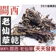 極鮮豆舖 Herbal  ㊣ 100% 苗栗 關西 紅骨老仙草乾 三年以上 600/1000克包裝 大量下標區