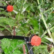 Garden Watering System Hydroponics Irrigation System Kit