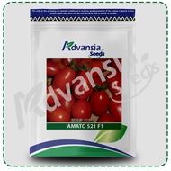Biji benih Tomato seed 番茄种子 Amato 生多多 103 F1 1500 seeds Advansia (5 g)