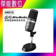 圓剛黑鳩直播錄音麥克風 AM310 高音質USB麥克風 電競 直播 錄音 練歌 演奏