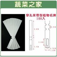 【蔬菜之家011-A23WI2】束帶型植物名牌(白色)-100入/組