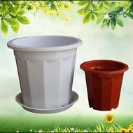 (廠家直銷現貨速出)優質E型塑料花盆長體高花盆簡約地面桌面大花盆純白色花盆塑料