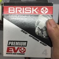 [BRISK捷克]火星塞 EVO系列