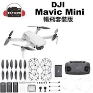 [贈64G] DJI 大疆 空拍機 Mavic Mini 單機版 暢飛套裝版 航拍機 小飛機 空拍機 公司貨