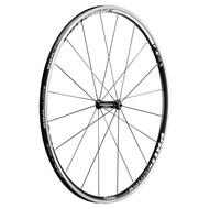 【行輪 Pro Lite】 21mm 鋁合金內胎式輪組 Prolite Bortola A21W 自行車輪框
